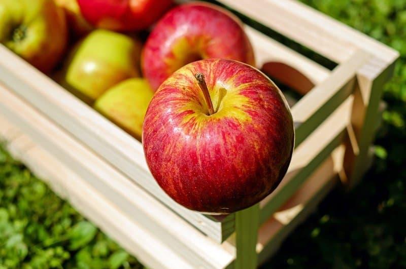 Apfelkorb mit roten Äpfel