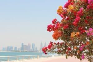 Dubai mit Kleinkind Titelbild