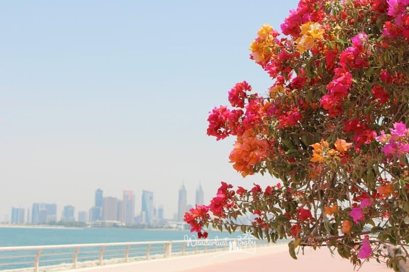 Dubai mit Kleinkind Baum