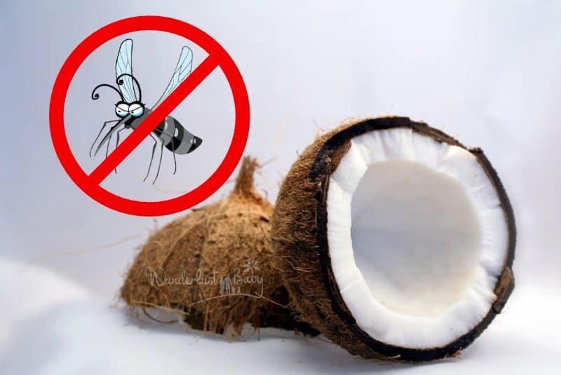 Kokosöl gegen Mücken: Unser natürlicher Mückenschutz | Blog