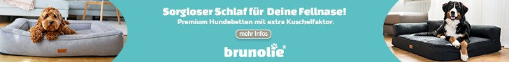 banner brunolie